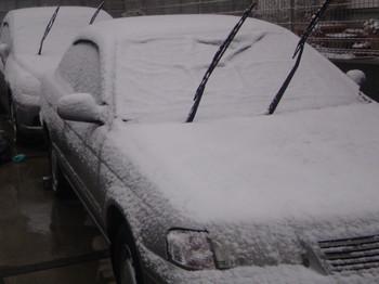 2月8日 雪 千葉